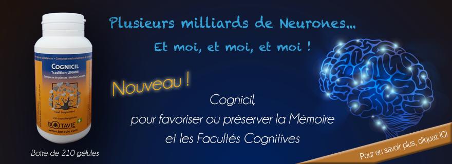 Cognicil